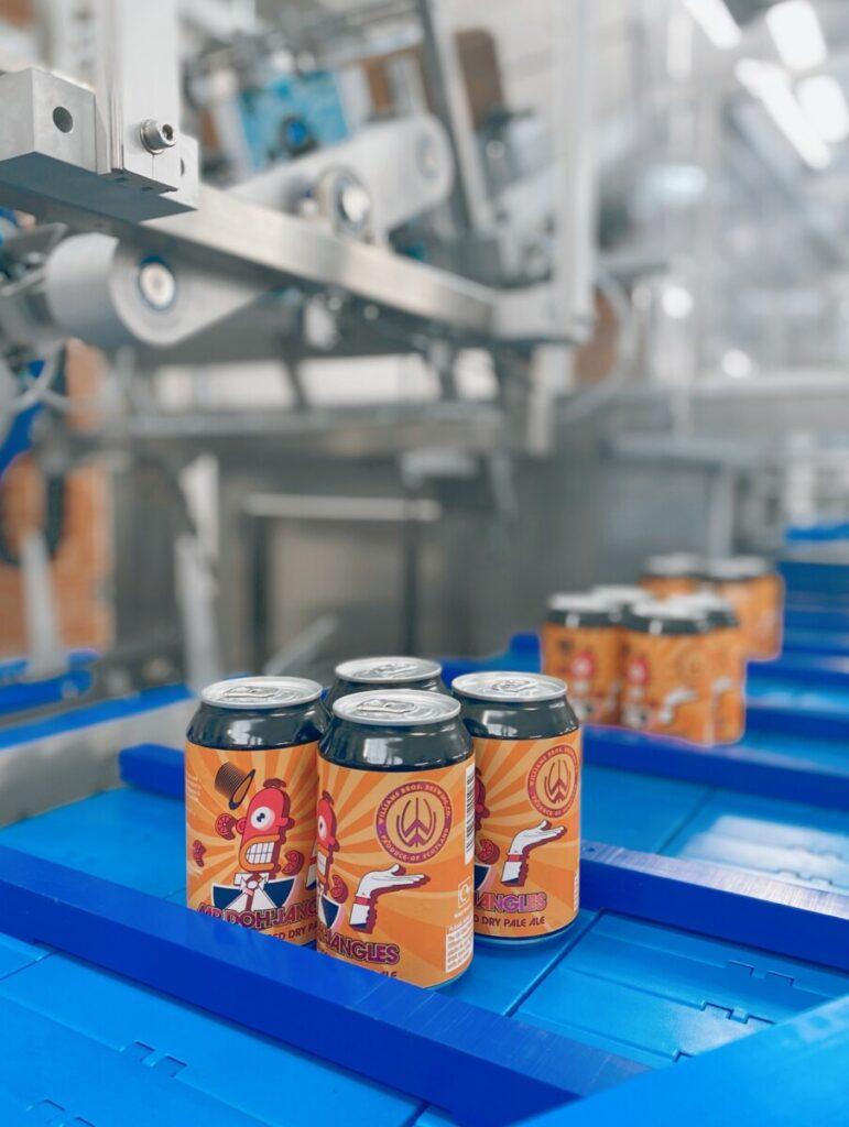 Fully Automatic Beverage Multipack Cartoner 2